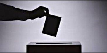 El STEC-IC llama a votar a las candidaturas que apuesten por la Educaci�n P�blica