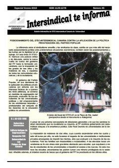 Boletín Informativo número 45 del STEC-IC Universidad