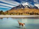Viaje de verano del STEC-IC a Chile, Argentina y Uruguay