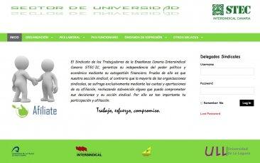 Accede a la Web del STEC-IC Universidad