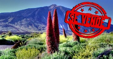 Canarias SOStenible: Por la Defensa de la Tierra