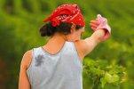 15 de octubre. Día de las Mujeres Rurales