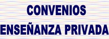 VIII Convenio de enseñanza y formación privada no reglada