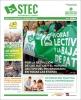 El STEC-IC lanza un periódico trimestral con noticias de interés y guías prácticas para el profesorado