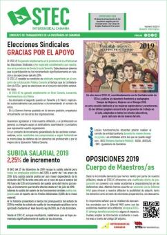 Boletín Informativo STEC-IC enero 2019
