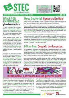 Boletín Informativo STEC-IC febrero 2019
