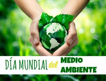 El STEC reclama la Declaración de Emergencia Climática en el Día Mundial del Medioambiente