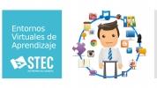 Curso homologado de Entornos Virtuales de aprendizaje (EVA)