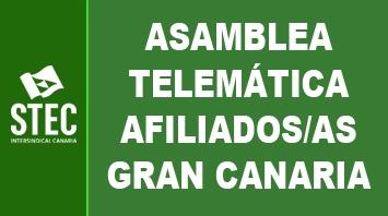 Asamblea Insular telemática de afiliados/as de Gran Canaria