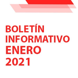 Boletín Informativo         Enero 2021