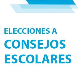 El STEC-IC solicita la paralización de las elecciones a los Consejos Escolares
