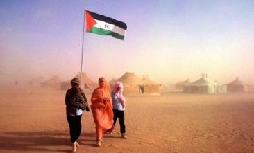 Desde el STEC-IC, más que nunca solidaridad con el pueblo Saharaui