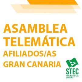 Convocatoria Asamblea Insular telemática de afiliados/as de Gran Canaria