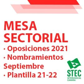 Mesa Sectorial 02/08/21. Oposiciones 2021.Plantillas docentes para el curso 21/22. Nombramientos Septiembre