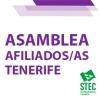 Convocatoria de Asamblea Insular de afiliados/as de Tenerife